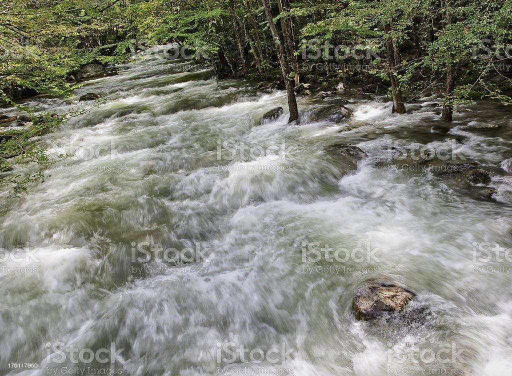 Flooding River royalty-free stock photo