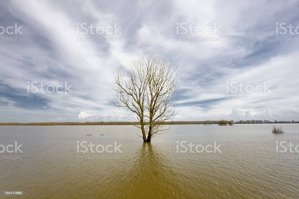 Floodland Flooded Evros river - physical border between Greece and Turkey - Vibrant colors. Absence Stock Photo