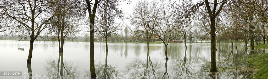Alluvioni (Modena, Italia): allagamenti dopo straripamento del fiume Secchia. stock photo