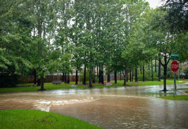 Floodwater Rapids on a Texas Suburban Street Corner from Hurricane stock photo