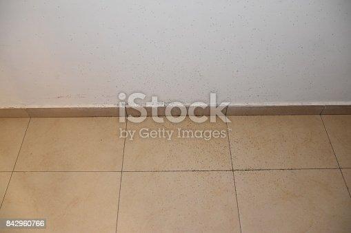 485413653istockphoto A floor full of ants 842960766