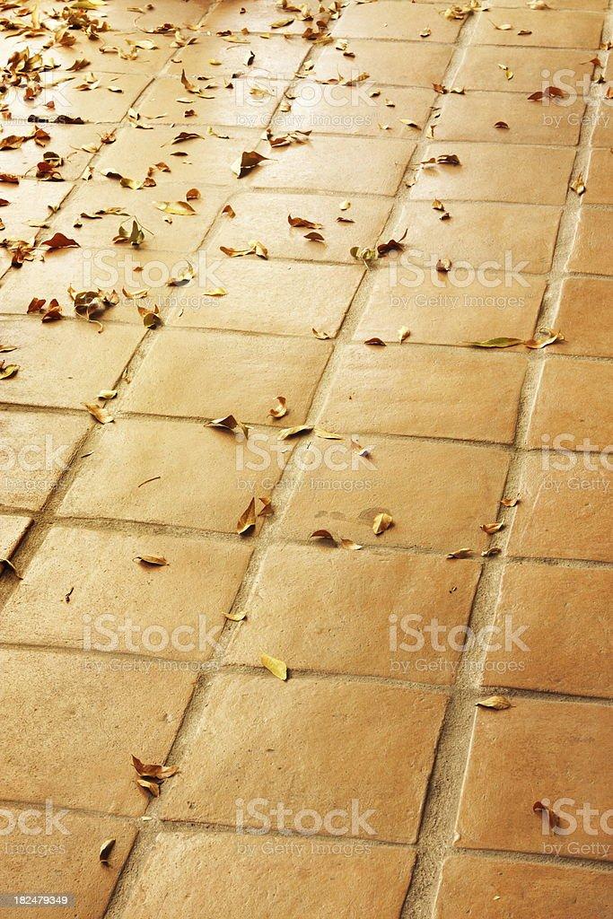 Floor Tile Terracotta Decor Leaves stock photo