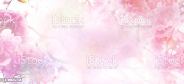Photo of Floral abstract pastel background