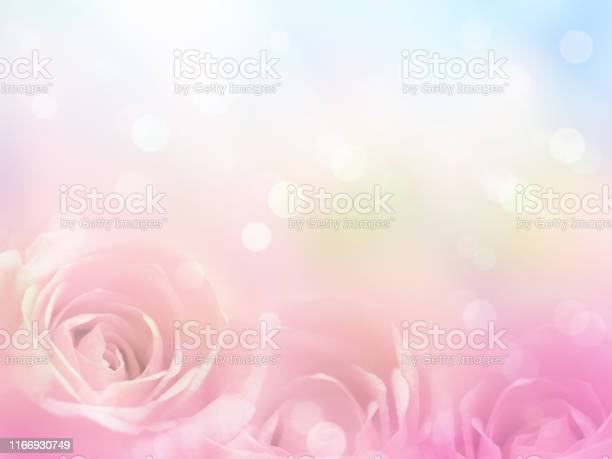 Floral abstract pastel background with copy space picture id1166930749?b=1&k=6&m=1166930749&s=612x612&h=ycupwyjameindlra4uo8n3xgfssli0rn3dwgxvbahpm=