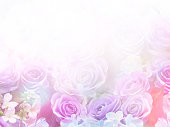 istock Floral abstract pastel background with copy space. 901386552
