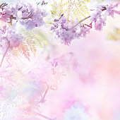Abstract floral backdrop of purple flowers over pastel colors with soft style for spring or summer time. Floral design background and copy space.