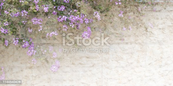 istock Floral abstract pastel background with copy space.Flower soft background in pastel tone for valentine or wedding 1144540428