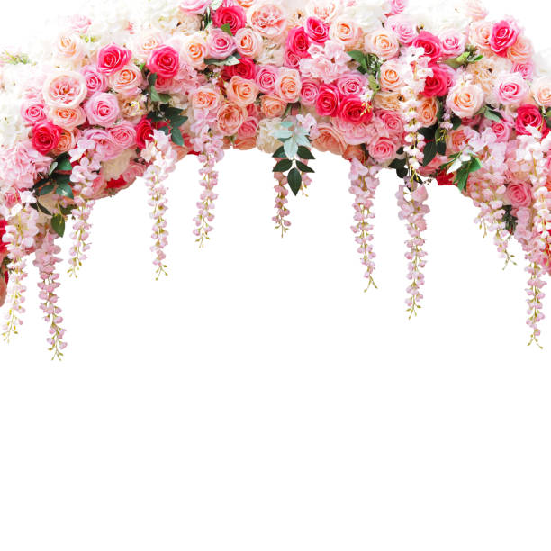 floral arbor for wedding decoration isolated on white Close up floral arbor for wedding decoration isolated on white background. Pink roses bouquet in arch composition for valentines day card. natural arch stock pictures, royalty-free photos & images