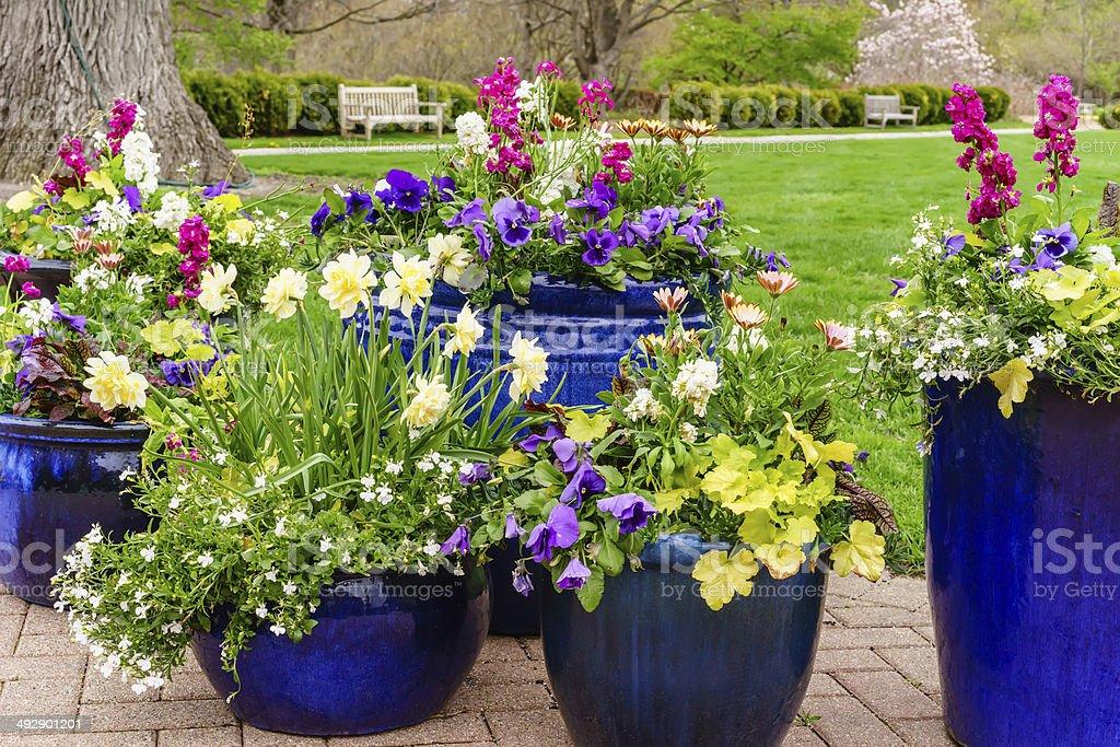 Floral arrangement in spring stock photo