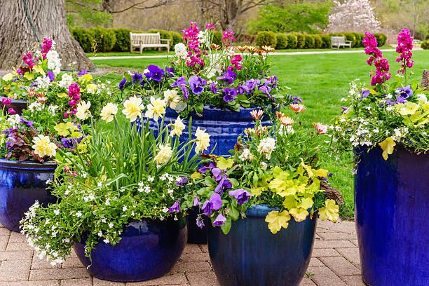 Floral arrangement in spring
