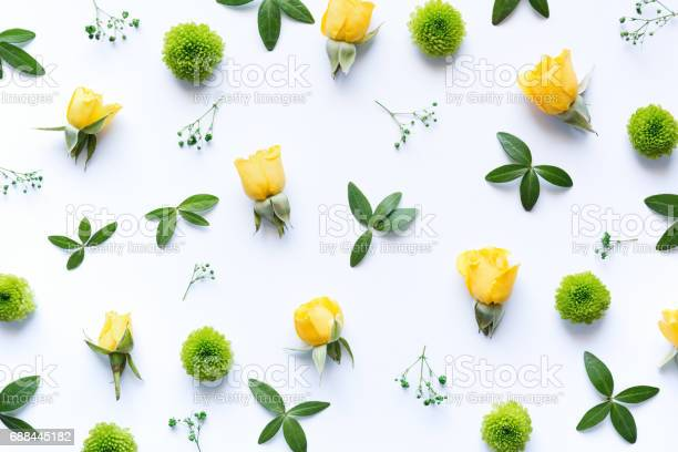 Photo of Floral Arrangment On White Background