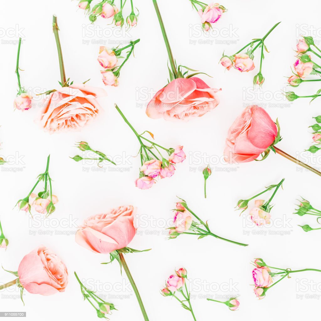 Floral Background Floral Pattern Made Of Pink Roses On White