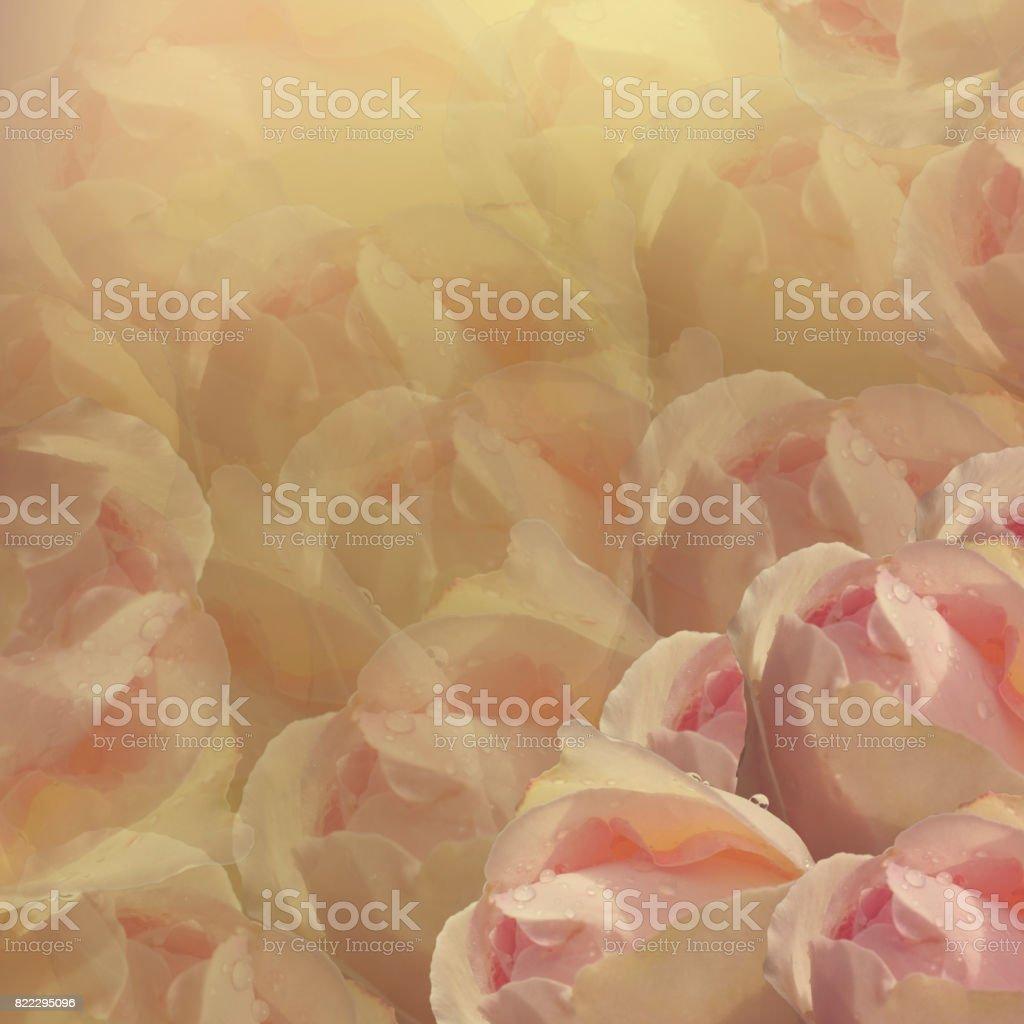 Floral Background Flowers On Whiteyellow Background Lightpink