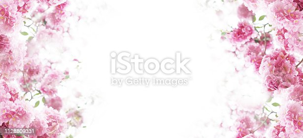 istock Floral background 1128809331