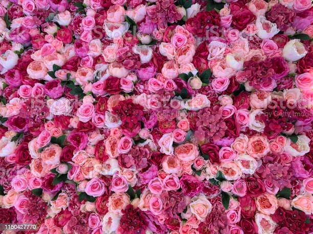 Floral background picture id1150427770?b=1&k=6&m=1150427770&s=612x612&h=cbgoqmpymr9j51c28oxyplrcwaohl1e3xzsp vhfmrg=