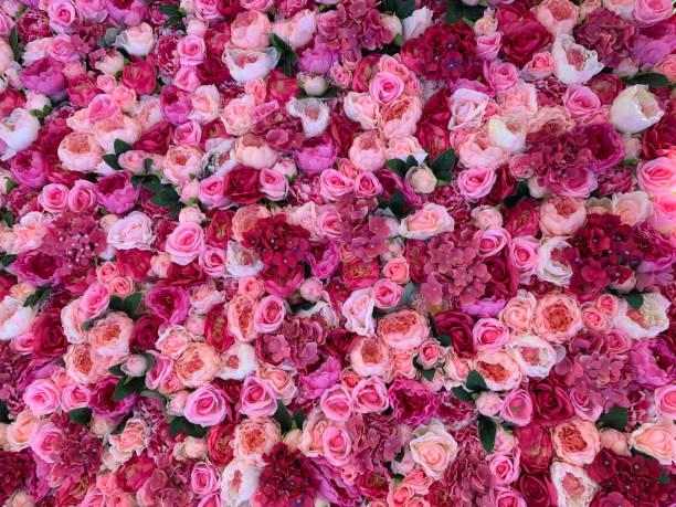 Floral background picture id1150427770?b=1&k=6&m=1150427770&s=612x612&w=0&h=obyepllx0znz92xnwjsncqzgkgnebtx67ezvtvs5gco=