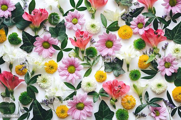 Floral background picture id628099840?b=1&k=6&m=628099840&s=612x612&h=7dgbayyhyb7o4uqet1bfdexuu v6ssauquj9cwf2bd0=