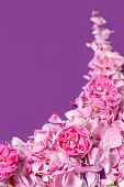 istock Floral background. Valentine's background. Valentines Day and Mother Day background. 1159674499