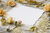 istock Floral background with fern leaves, dried roses on rustic white 615832564