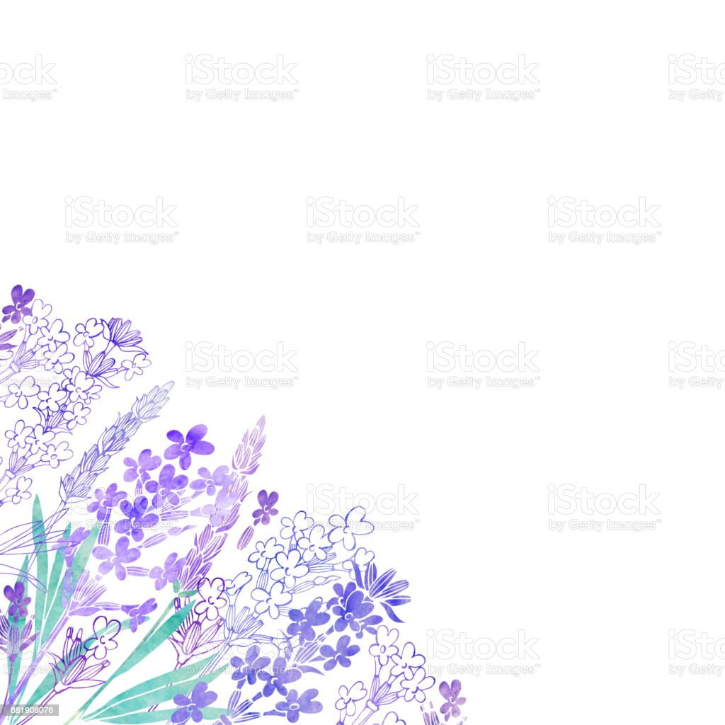Floral background with  lavender flowers and place for text. Watercolor illustration on a white background. Invitation, greeting card or an element for your design. stock photo