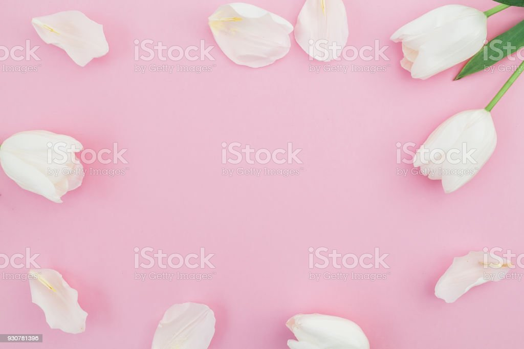 Floral background with white tulips flowers on pink pastel floral background with white tulips flowers on pink pastel background flat lay top view mightylinksfo