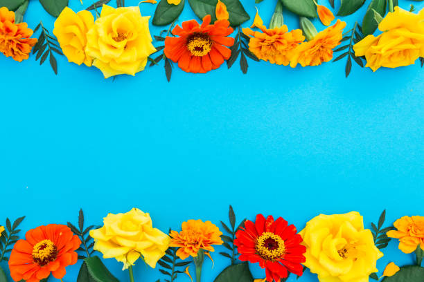 Floral border frame of yellow and red flowers on blue background flat picture id840519024?b=1&k=6&m=840519024&s=612x612&w=0&h=zz6p45vrlsb8fnb8ibpfezvdqdzrspd kcothtrg0nk=