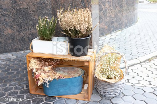 istock Floral composition of decorative plants and flowers, wooden decor and wicker basket n the street 1071879148