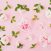 istock Floral composition with roses and leaves on pastel pink background. Flat lay, top view. 1063209720