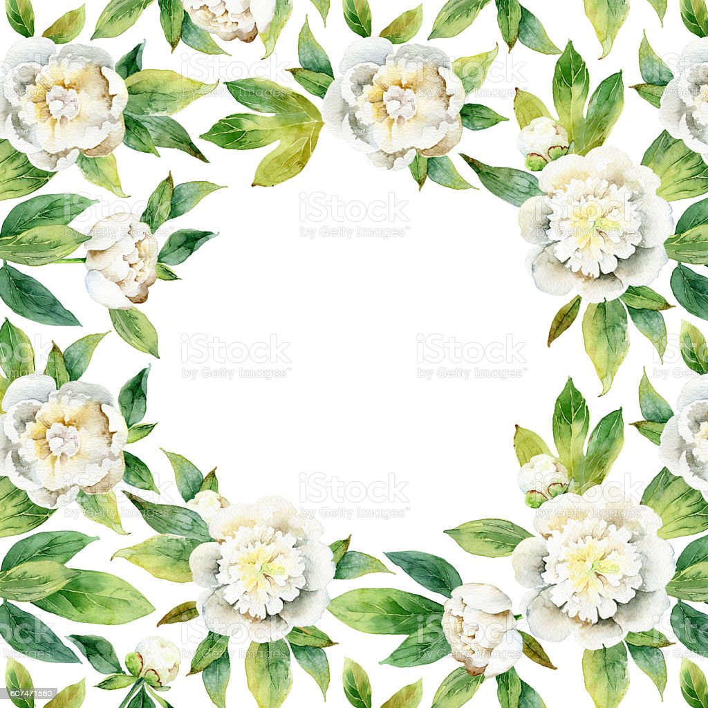 Floral composition with white peonies stock photo