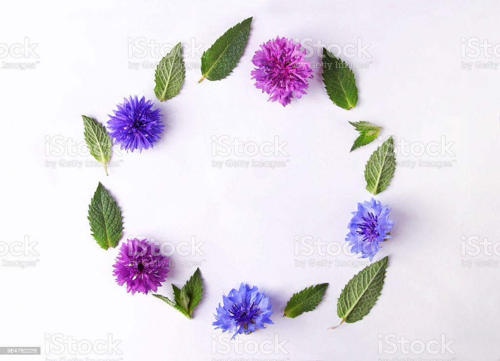 Floral frame made of flowers royalty-free stock photo