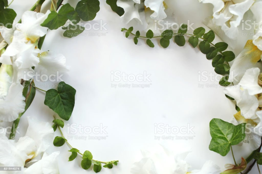 Floral frame made of fresh Iris white flowers and ivy (hedera) branches on white background. Flat lay, top view. stock photo