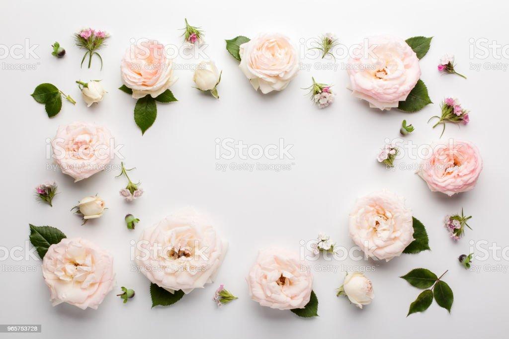 Floral frame gemaakt van roze rozen en groene bladeren op een witte achtergrond. - Royalty-free Bloem - Plant Stockfoto