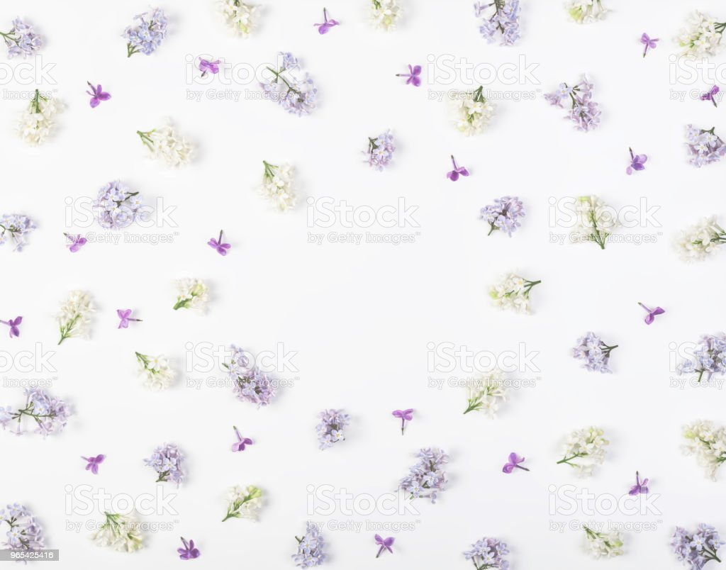 Floral frame made of spring lilac flowers isolated on white background. Top view with copy space. Flat lay. zbiór zdjęć royalty-free