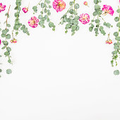 istock Floral frame of pink roses and eucalyptus on white background. Flat lay, top view 842487028