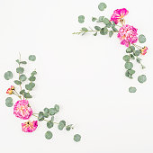 istock Floral frame of pink roses and eucalyptus on white background. Flat lay, top view. Valentines background 851012366