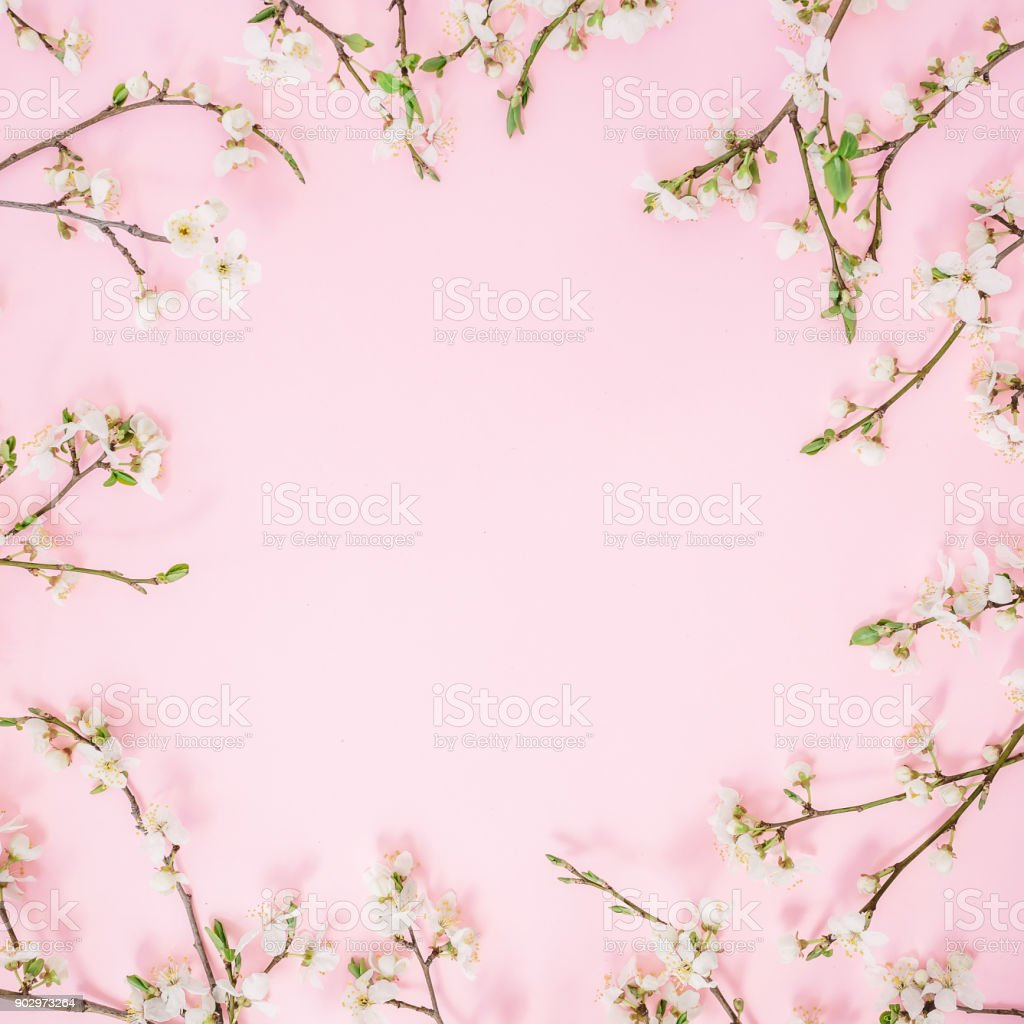 Floral Frame Of Spring Flowers Isolated On Pink Background Flat Lay