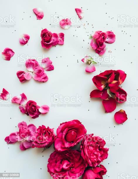 Floral frame of vivivd pink flowers on the light mint green picture id936133658?b=1&k=6&m=936133658&s=612x612&h=v 1glgiv5diyd5r9o mutofd0udsmwb6wfazvc0tybs=