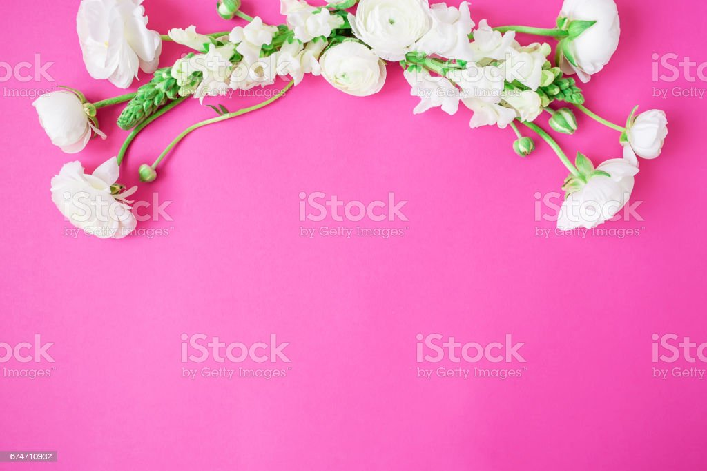 Floral frame of white flowers on pink background. Flat lay, top view.