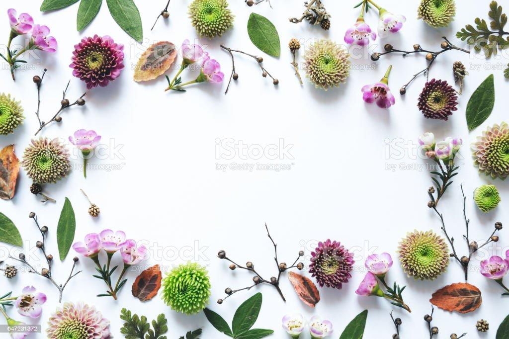 白い背景の上の花のフレーム ストックフォト