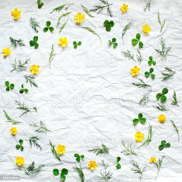Floral frame picture id539223844?b=1&k=6&m=539223844&s=612x612&h=rvcn0dciutngcnzegnq3vrmqgithbsgwen92onbechq=