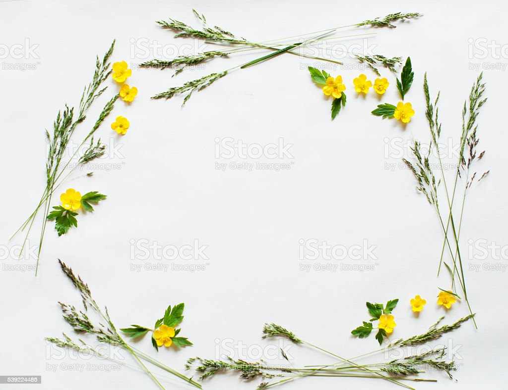 Floral frame – Foto