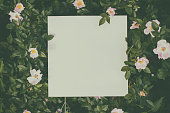 istock Floral frame 957430100