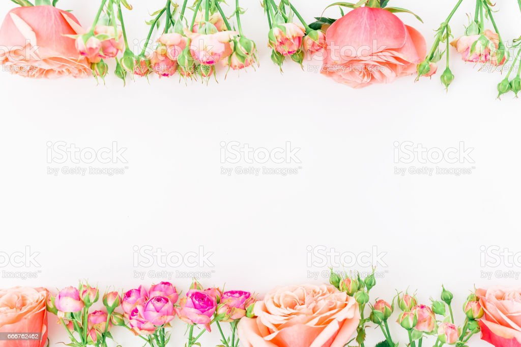 Floral frame with beautiful pink roses on white background. Flat lay, top view. foto stock royalty-free