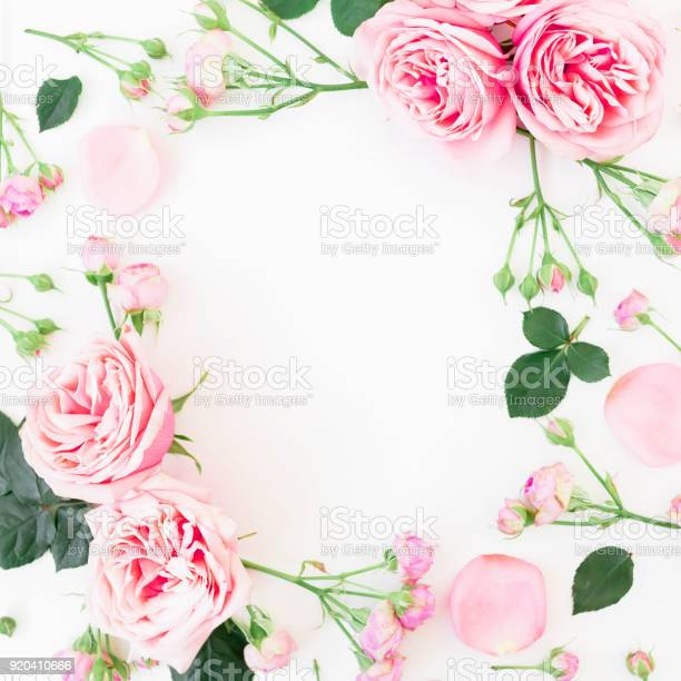 Floral frame with pink roses buds and leaves on white background flat picture id920410666?b=1&k=6&m=920410666&s=612x612&h=x 53zal8xhpycoaahshxgmlyqxrhkhpehpsceeckvza=