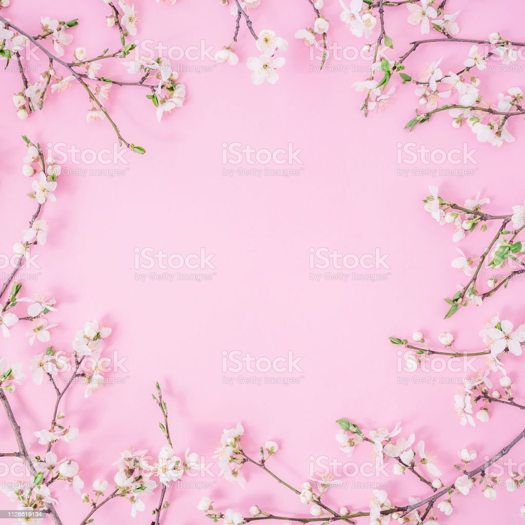 Floral frame with white flowers on pastel pink background. Flat lay,...