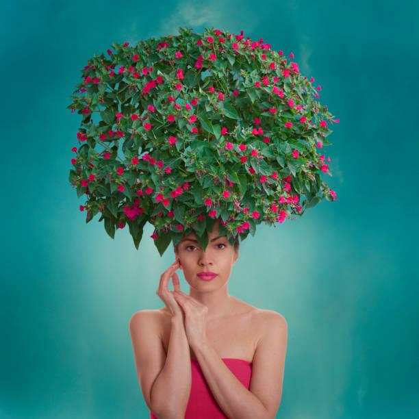 floral frisur - haare wachsen stock-fotos und bilder