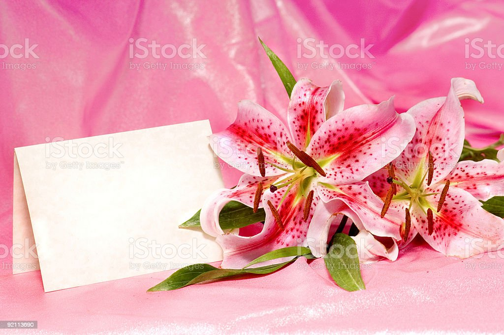 Floral Invitation royalty-free stock photo