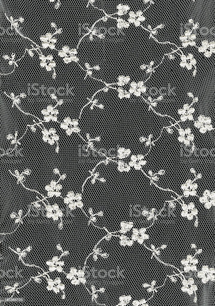 Floral Lace royalty-free stock photo