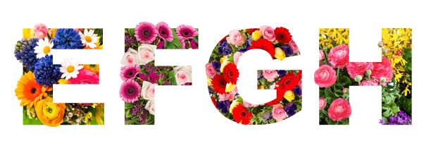 Floral lettering alphabet e f g h flower heads bouquet picture id1220645953?b=1&k=6&m=1220645953&s=612x612&w=0&h=hqhtoq0pq1wx3da5co1psnqf25bmeeh5ipe4qoxvcio=