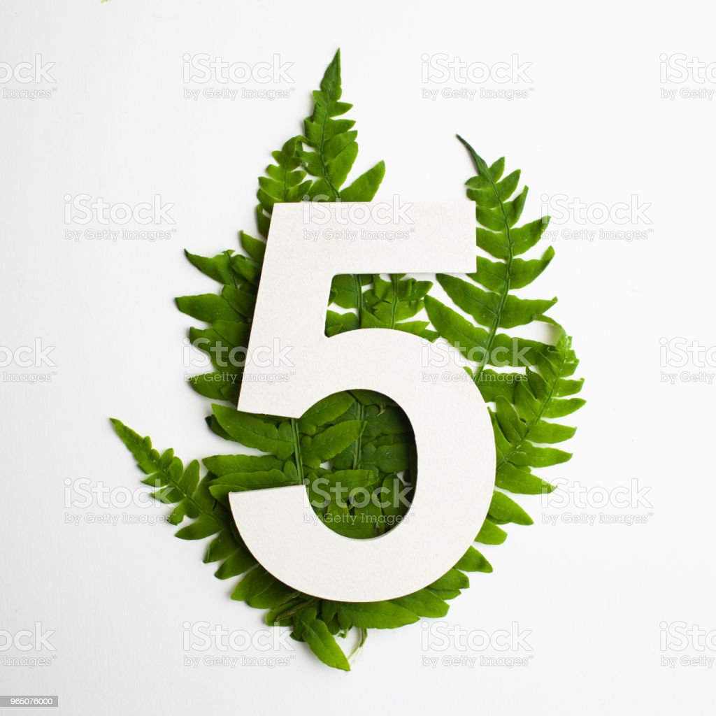 Floral number five. Beautiful green leaves and fern foliage numbers. royalty-free stock photo